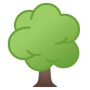 Deciduous tree icon