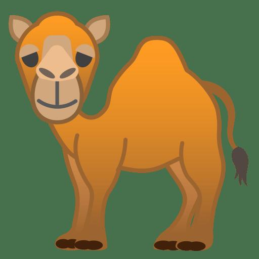 22242-camel icon