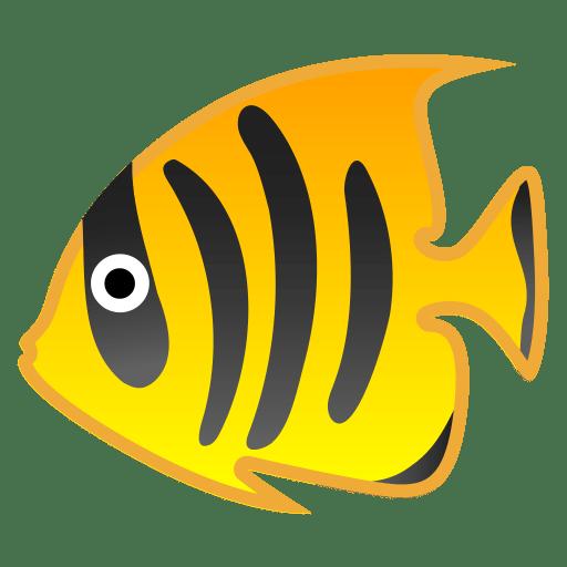 22294-tropical-fish icon