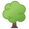 22330-deciduous-tree icon