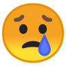 10058-crying-face icon