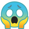10067-face-screaming-in-fear icon