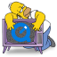 http://icons.iconarchive.com/icons/gordon-irving/simpsons-2/64/QuickTime-icon.png