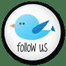 Twitter-button-follow-us icon