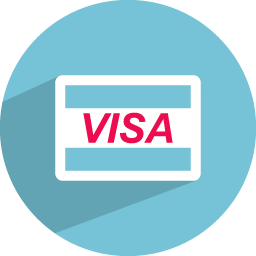 Visa card icon