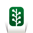 Newsvine icon