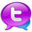 Large Twitter Logo icon