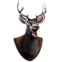 Deer-Head icon