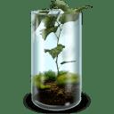 Mossy Terrarium icon