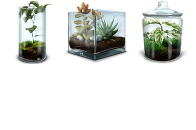 Terrarium Icons
