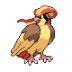 018 Pidgeot icon