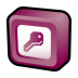 Microsoft-Office-Access icon