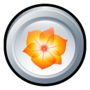 Adobe Illustrator CS 2 icon