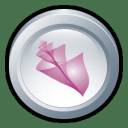 Adobe Bridge CS 2 icon