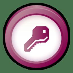 Microsoft Office Access icon