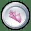 Adobe-Bridge-CS-2 icon