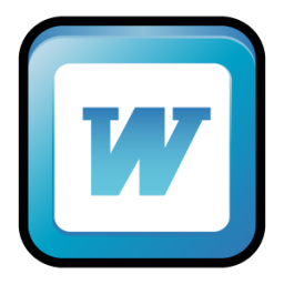 MS Office 2003 Word icon
