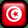 Tunisia-Flag icon