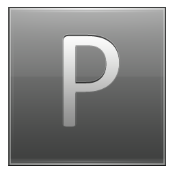 Letter P grey icon
