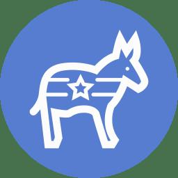 Election Donkey Outline icon