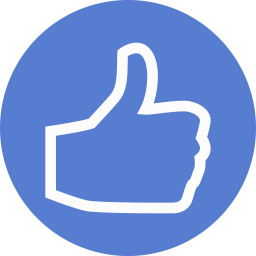 Election Thumbs Up Outline icon