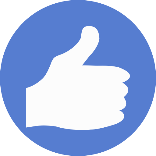 Election Thumbs Up icon