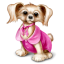 http://icons.iconarchive.com/icons/icondrawer/gifts/64/dog-icon.png