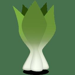 Bok choy icon