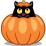 Cat-pumpkin icon