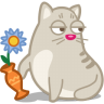 Cat-rascal icon