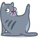 Cat clean icon