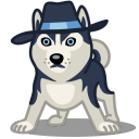 dog haski icon