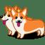 Dog corgi icon