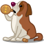 Dog saint bernard icon