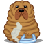 Dog sharpei icon