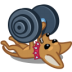 Dog-barbell icon
