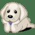 dog-labrador-icon.png