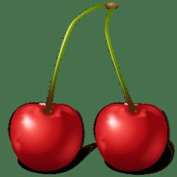 Fruit Cherry icon