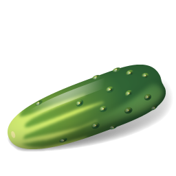 Vegetable Cucumber icon