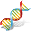 Body-DNA icon
