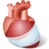 Body-Heart-Injury icon