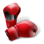 Boxing-Gloves icon