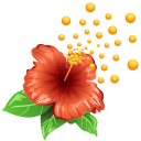 http://icons.iconarchive.com/icons/icons-land/weather/128/Pollen-Flower-icon.png
