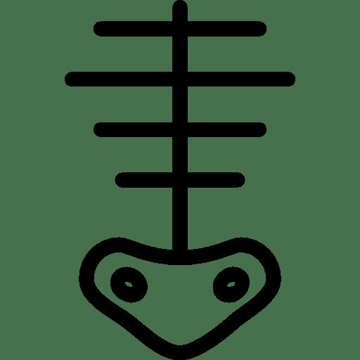 Skeleton-2 icon