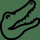 Animals-Alligator icon
