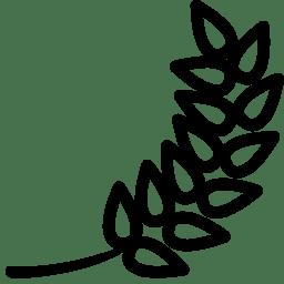 Plants Barley icon