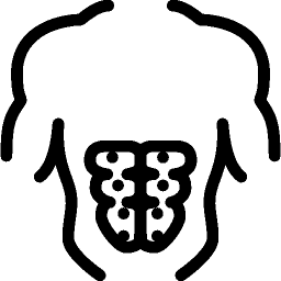 Sports Prelum icon
