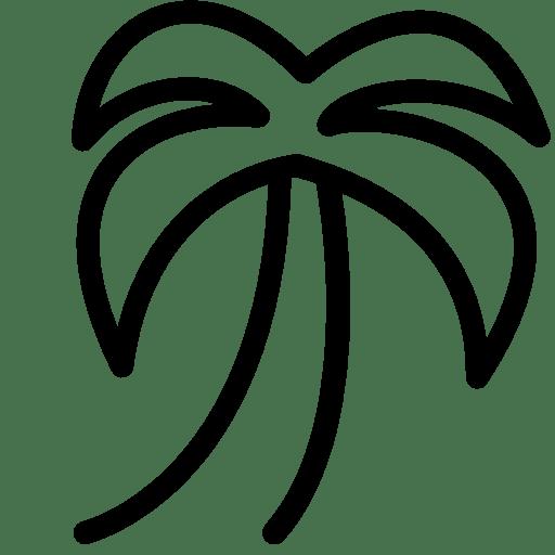 Plants-Palm icon