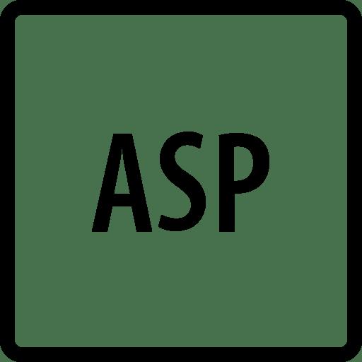 Programming Asp icon