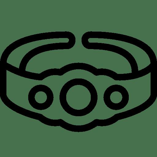 Sports Championship Belt icon